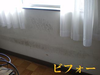 2009_0319_142931-IMGP1715.JPG
